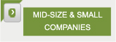 mid size & small companies